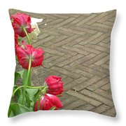 Keukenhof Gardens 36 Throw Pillow