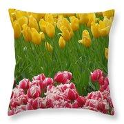 Keukenhof Gardens 37 Throw Pillow