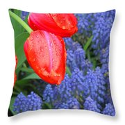 Keukenhof Gardens 4 Throw Pillow