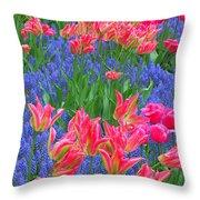 Keukenhof Gardens 5 Throw Pillow