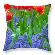 Keukenhof Gardens 6 Throw Pillow