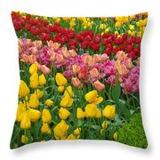 Keukenhof Gardens 72 Throw Pillow