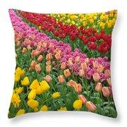 Keukenhof Gardens 74 Throw Pillow