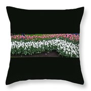 Keukenhof Gardens 8 Throw Pillow
