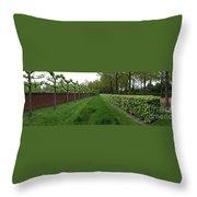Keukenhof Gardens Panoramic 10 Throw Pillow
