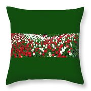 Keukenhof Gardens Panoramic 20 Throw Pillow