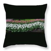 Keukenhof Gardens Panoramic 9 Throw Pillow