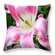 Keukenhof Pink Lily Throw Pillow