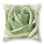 Key Lime Souffle Throw Pillow