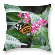Key West Butterfly Conservatory - Monarch Danaus Plexippus 2 Throw Pillow