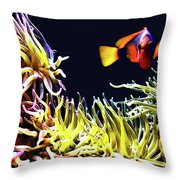 Key West Fish Throw Pillow
