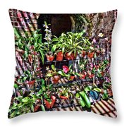 Key West Garden Club Pots Throw Pillow