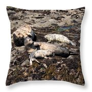 Kicking Back On The Rock Throw Pillow