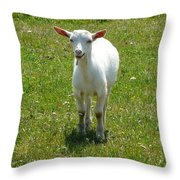 Kid Goat Throw Pillow