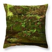 Kildoo Trail Stoned Turtle Throw Pillow
