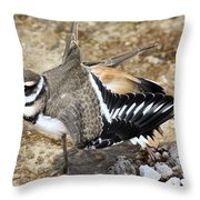 Killdeer Fakeout Throw Pillow