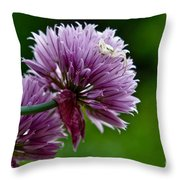 Killer In Hiding Throw Pillow