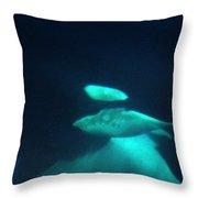 Killer Whales Orcas Under Water  Off The San Juan Islands 1986 Throw Pillow