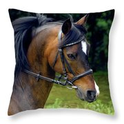 Kind Eye Willing Heart Throw Pillow