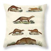 Kinds Of Otters And Marten Throw Pillow