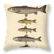 Kinds Of Trouts Throw Pillow