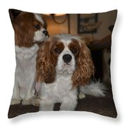 King Charles Dogs Throw Pillow