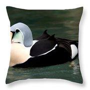 King Eider Throw Pillow