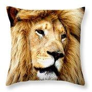 King Ludwig Xviiii Throw Pillow