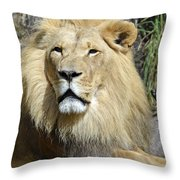 King Of Beasts Throw Pillow