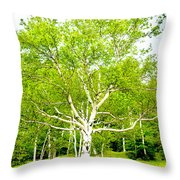 King Of The Birch Throw Pillow