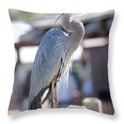 King Of The Boardwalk Throw Pillow