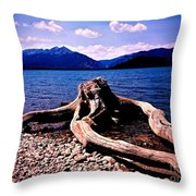 King Of The Driftwood Throw Pillow by Garren Zanker