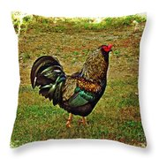 King Of The Hill - Winery Rooster Throw Pillow