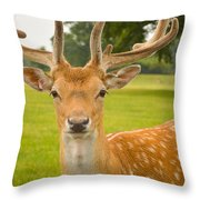 King Of The Spotted Deers Throw Pillow