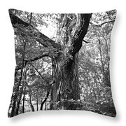 King Of The Timber Bw Throw Pillow