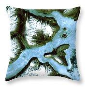 King Oscar Fjord Greenland Throw Pillow