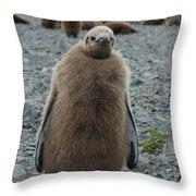 King Penguin Chick Throw Pillow