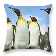 King Penguins Looking Throw Pillow