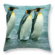 King Penguins Going To Sea Throw Pillow