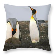 King Penguins With Chick And Egg Throw Pillow
