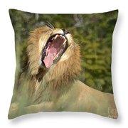 King Size Yawn Throw Pillow