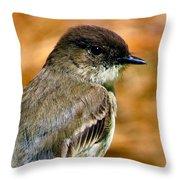 Kingbird Chillin Throw Pillow