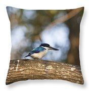 Kingfisher-top-end Australia Throw Pillow