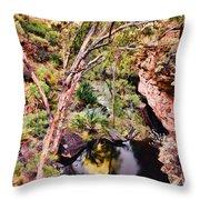 Kings Canyon V9 Throw Pillow