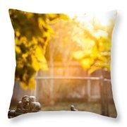 Kings Of The Backyard Jungle Throw Pillow