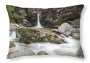 Kinsman Falls - Franconia Notch State Park New Hampshire Throw Pillow