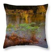 Kintbury Newt Ponds Throw Pillow
