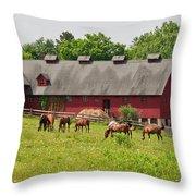 Kirtland Hills Farm 0722 Throw Pillow