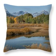 Kiss Of Fall In The Grand Tetons Throw Pillow by Sandra Bronstein