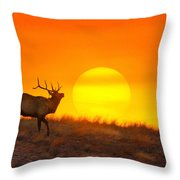 Kiss The Sun Throw Pillow by Kadek Susanto